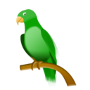 128x128 of parrot