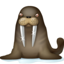 128x128 of Walrus