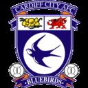 128x128 of Cardiff City