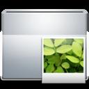 1 Folder Images