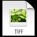 z File TIFF