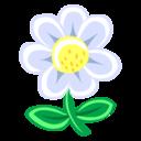 128x128 of White Flower