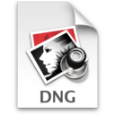128x128 of DNG