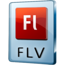 FLV File