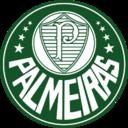 128x128 of Palmeiras