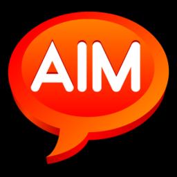 256x256 of AIM