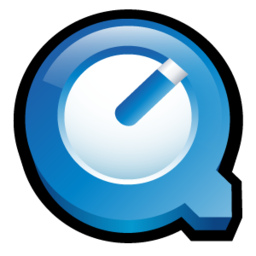 256x256 of Quicktime