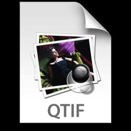256x256 of QTIF