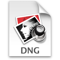 256x256 of DNG