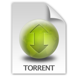 256x256 of Torrent Document