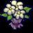 48x48 of Bouquet