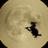 48x48 of Moon