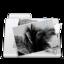 64x64 of Images Folder stripes