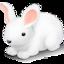 64x64 of Bunny
