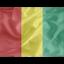64x64 of Regular Guinea