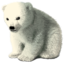 [Image: baby-polar-bear.png]