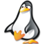 64x64 of Penguin