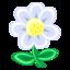 64x64 of White Flower