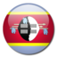 64x64 of Swaziland Flag