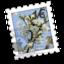 64x64 of Blooming Cherries