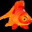 64x64 of Fish