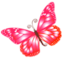 64x64 of Butterfly pink