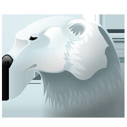 Full Size of Polar bear