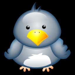 Full Size of Penguin