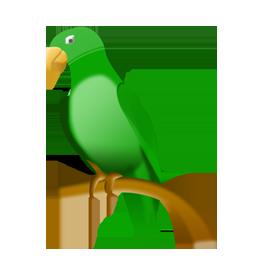 Full Size of parrot