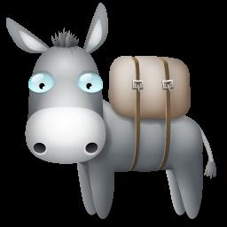 Full Size of Donkey
