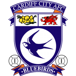 Full Size of Cardiff City