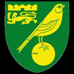Full Size of Norwich City