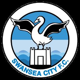 Full Size of Swansea City
