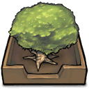 Tree in an inbox