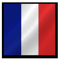 Full Size of France flag