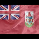 Regular Bermuda