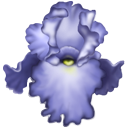 Full Size of Iris