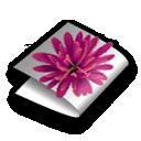 Illustrator CS folder