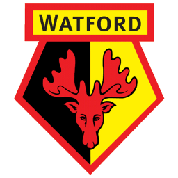 Full Size of Watford FC