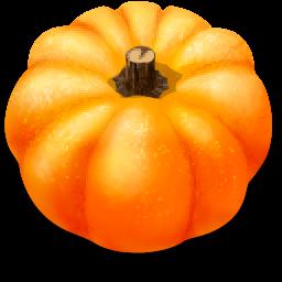 Full Size of Pumpkin