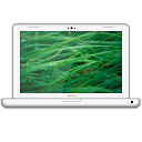 MacBook Grass