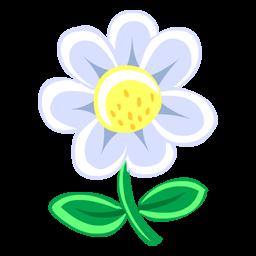 Full Size of White Flower