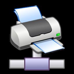Full Size of Network Printer