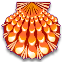 Lyropecten nodosa