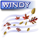 Windy