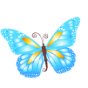 Full Size of Butterfly blue